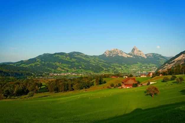 Krajobraz z dużą zieloną łąką górską w alpach szwajcarskich.