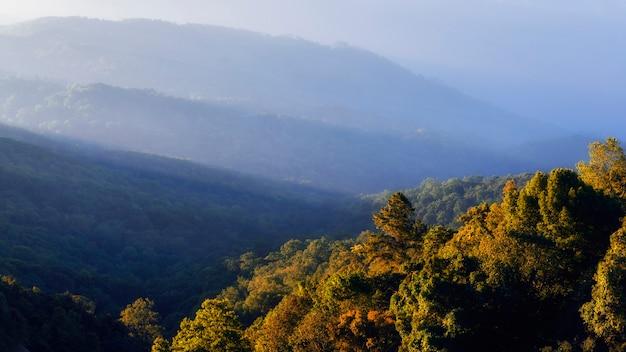 Krajobraz z górą na mgle w ranku przy chiang mai, tajlandia.