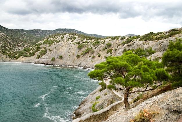 Krajobraz z górami i morzem