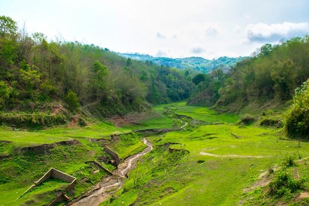 Krajobraz z górami, lasem i rzeką z przodu. piękna sceneria