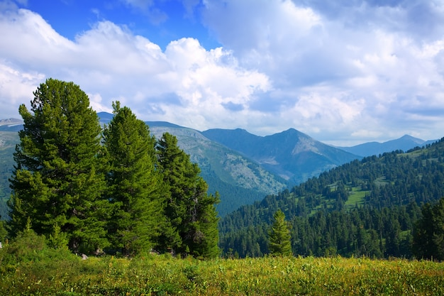 Krajobraz z górami lasów