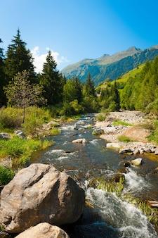 Krajobraz z górską rzeką przepływającą przez las górski w alpach szwajcarskich