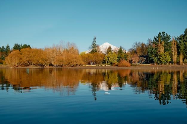 Krajobraz z jeziorem, wspaniałymi drzewami i śnieżnym wulkanem. piękne refleksy na spokojnej wodzie w słoneczny dzień. villarrica, chile