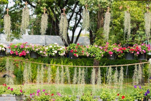 Krajobraz z kwiatami rzeżucha i hiszpańskim mchem