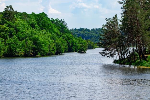 Krajobraz z lasem i rzeką z przodu. piękna sceneria.