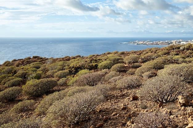 Krajobraz z lotu ptaka. wyspa wulkaniczna teneryfa.