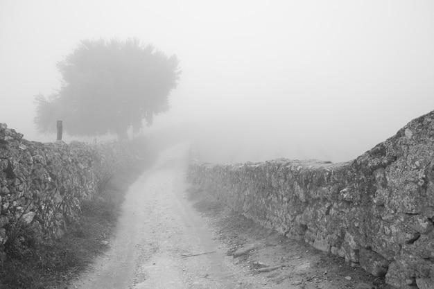 Krajobraz z mgłą w pobliżu montanchez. extremadura. hiszpania.