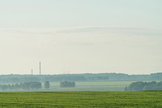 Krajobraz z mgłą w zaoranym polu