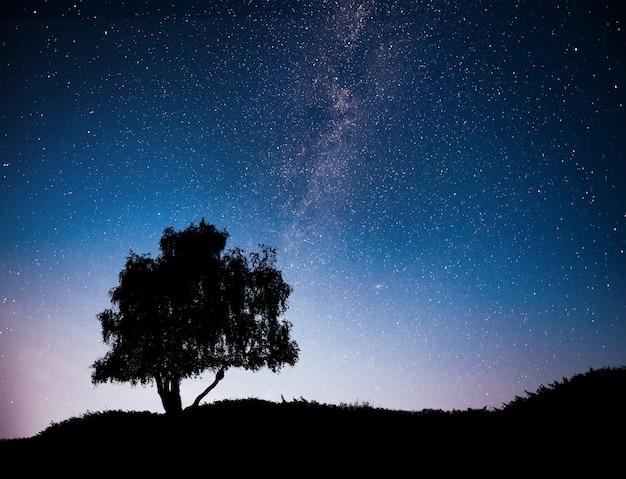Krajobraz z nocy gwiaździste niebo i sylwetka drzewa na wzgórzu. droga mleczna z samotnym drzewem, spadającymi gwiazdami.