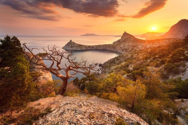 Krajobraz z pięknym widokiem na górską dolinę i drzewo, błękitne niebo i morze o wschodzie słońca. tło podróży