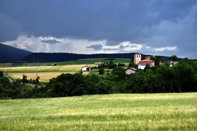Krajobraz z polami pszenicy i miastem quintanilla. valdegovia. kraj basków. hiszpania
