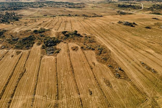 Krajobraz z polem siewnym w pobliżu malpartida de caceres.