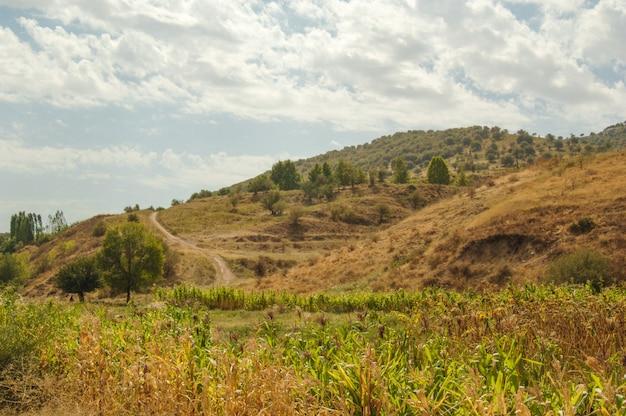 Krajobraz z równinami i górami. przyroda azji środkowej