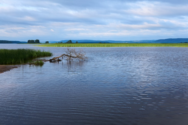Krajobraz z rozległym podmokłym jeziorem wśród wzgórz porośniętych trzciną