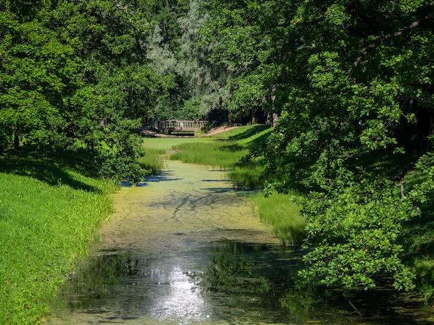 Krajobraz z rzeką w starym zielonym parku. rosja.