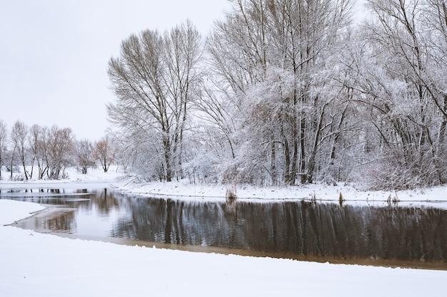 Krajobraz z śnieżnymi drzewami marznąca rzeka z odbiciem w wodzie