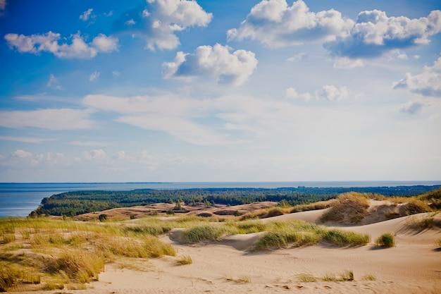 Krajobraz z szarymi wydmami na litwie
