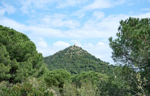 Krajobraz z zamkiem na szczycie góry