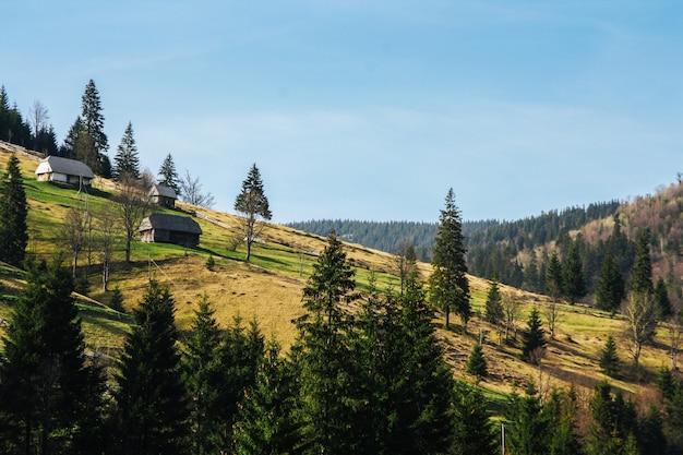 Krajobraz zielonych górskich wzgórz porośniętych lasem z małymi domkami.