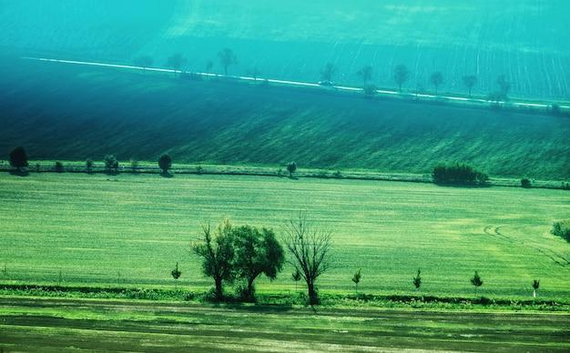 Krajobraz zielonych pól wsi