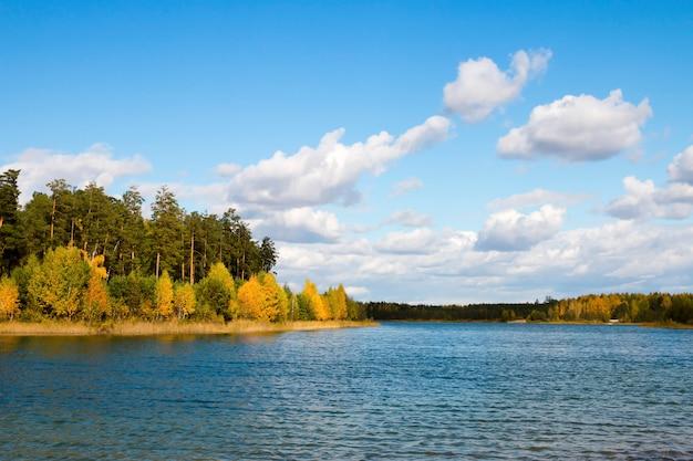 Krajobrazowy jesienny las blisko jeziora