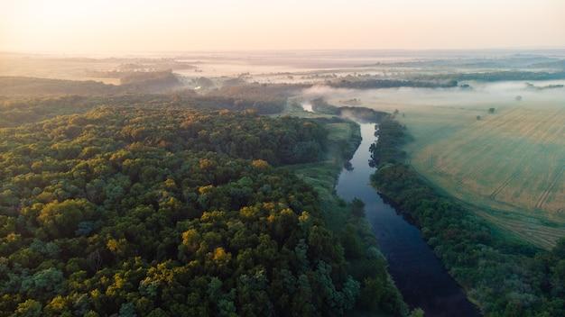 Krajobrazowy las nad rzeką we mgle