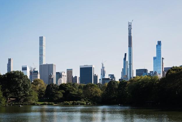Krajobrazowy obrazek żółwia staw w miasto nowy jork