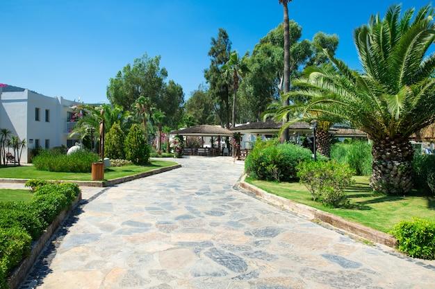 Krajobrazowy ogród hotelowy kurort turcja piękna drzewko palmowe
