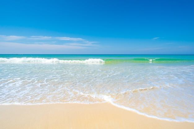 Krajobrazowy widok na plażę z błękitnym niebem