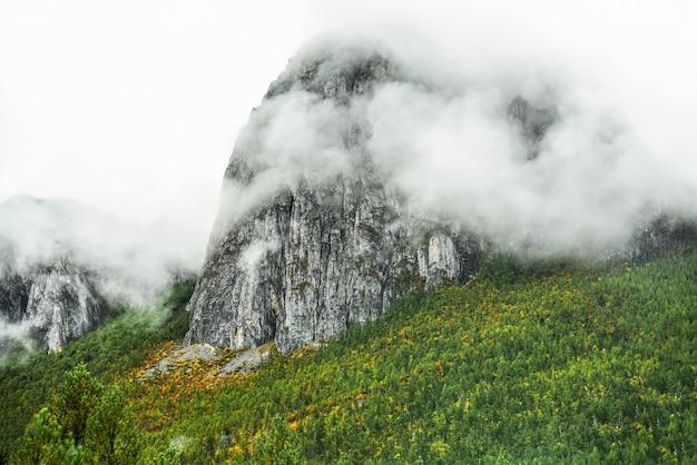 Krajobrazowy widok na rezerwat narodowy yading