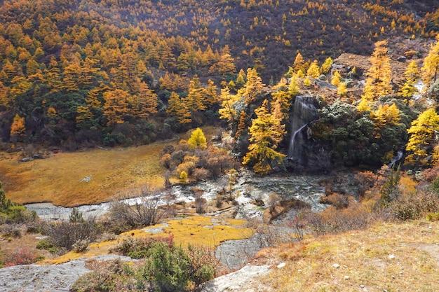 Krajobrazowy widok w jesieni przy yading rezerwą krajową