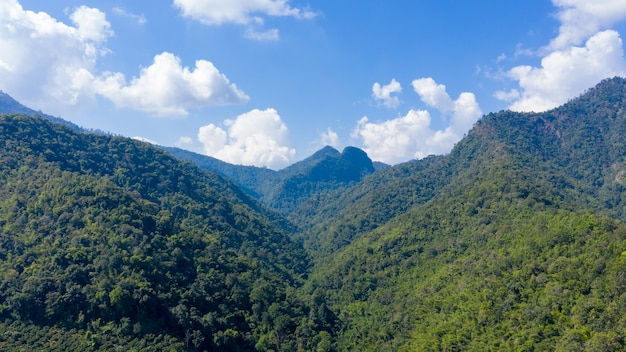 Krajobrazowy widok z lotu ptaka pasmo górskie i użytki rolne mandarynki w dolinie w chiangmai w tajlandii