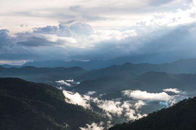 Krajobrazowy wizerunek zieleń tropikalnego lasu deszczowego wzgórza w mgłowym dniu z chmurnym niebem