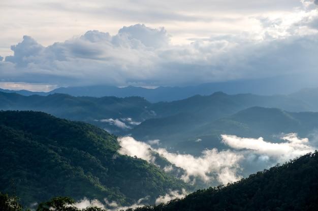 Krajobrazowy wizerunek zieleń tropikalnego lasu deszczowego wzgórza w mgłowym dniu z niebieskim niebem