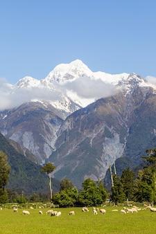 Krajobrazy alp południowych mount cook nowa zelandia