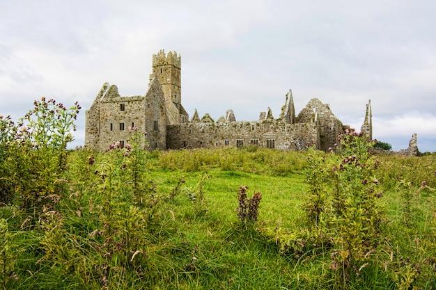 Krajobrazy irlandii. ruiny klasztoru ross w hrabstwie galway