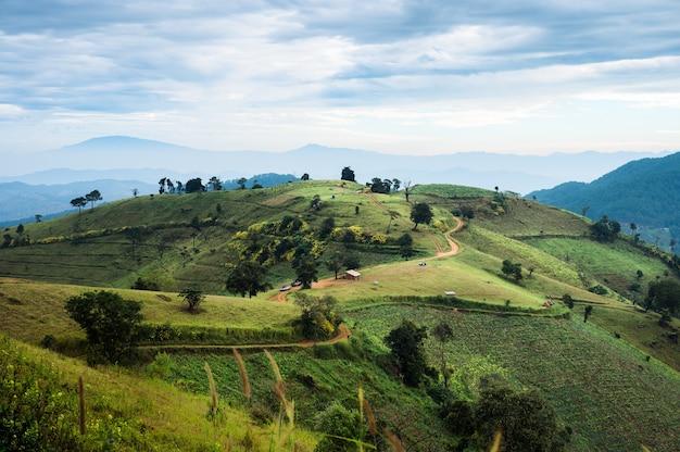 Krajobrazy rolnicze zielone wzgórza pastwiska i błękitne niebo na wsi w doi mae tho