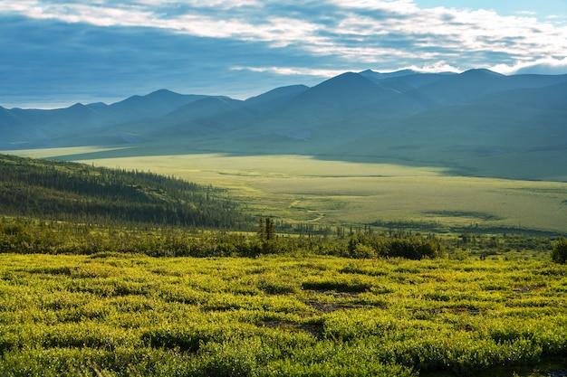 Krajobrazy tundry nad kołem podbiegunowym