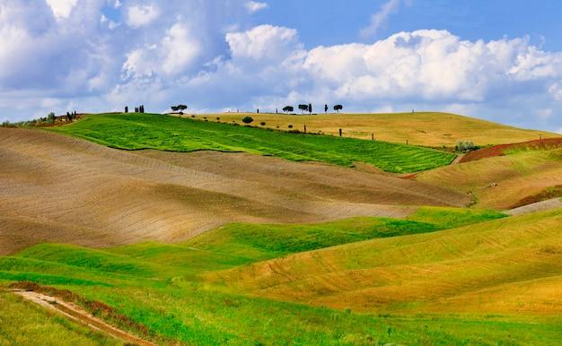 Krajobrazy tuscana. złote wzgórza orcia.