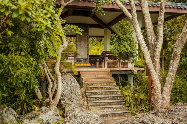 Krajowa chińska gazebo pagoda w naturalnym zieleń parku z tropikalnymi roślinami i drzewkami palmowymi. podróżuj po azji
