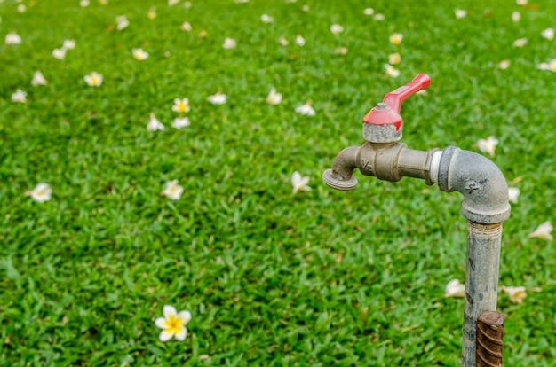 Kran w ogrodzie