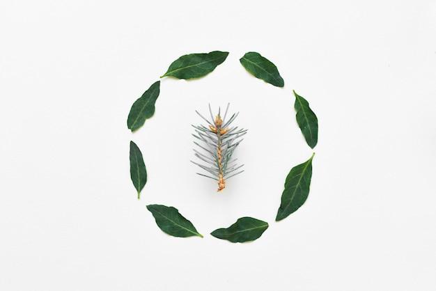Kreatywna aranżacja wykonana z naturalnych zielonych liści. leżał płasko. okrągła rama