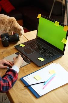 Kreatywna fotografka z uroczym kotem, używająca tabletu do rysowania graficznego i rysika, pracująca przy biurku i retuszująca zdjęcie na tablecie, miejsce pracy retuszera w studio fotograficznym domowe biuro ze zwierzakiem