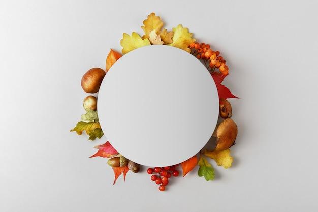 Kreatywna jesienna kompozycja liści i grzybów z miejsca na kopię. widok z góry.