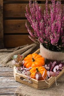 Kreatywna jesienna kompozycja na święto dziękczynienia z ozdobnymi pomarańczowymi dyniami i fioletowym wrzosem. martwa natura drewniane tła. koncepcja kwiatowy, botaniczny.