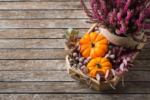 Kreatywna jesienna kompozycja na święto dziękczynienia z ozdobnymi pomarańczowymi dyniami i fioletowym wrzosem. widok płaski świeckich, widok z góry, miejsce, martwa natura drewniane tła. koncepcja kwiatowy, botaniczny.