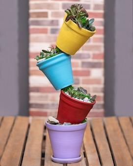 Kreatywna kolorowa doniczka na rośliny terrarium