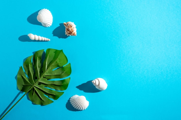 Kreatywna kompozycja z muszelek i tropikalnych liści palmowych na pastelowym niebieskim tle.