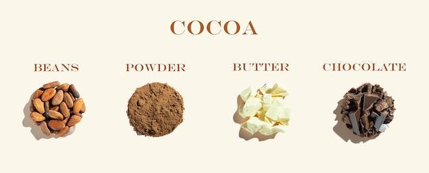 Kreatywna kompozycja ze zdrowymi ekologicznymi produktami kakaowymi ziarna kakaowe i kakao w proszku na kości słoniowej