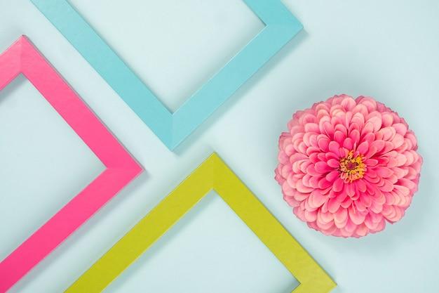 Kreatywna kompozycja złożona z jednego kwiatka i kolorowych ramek